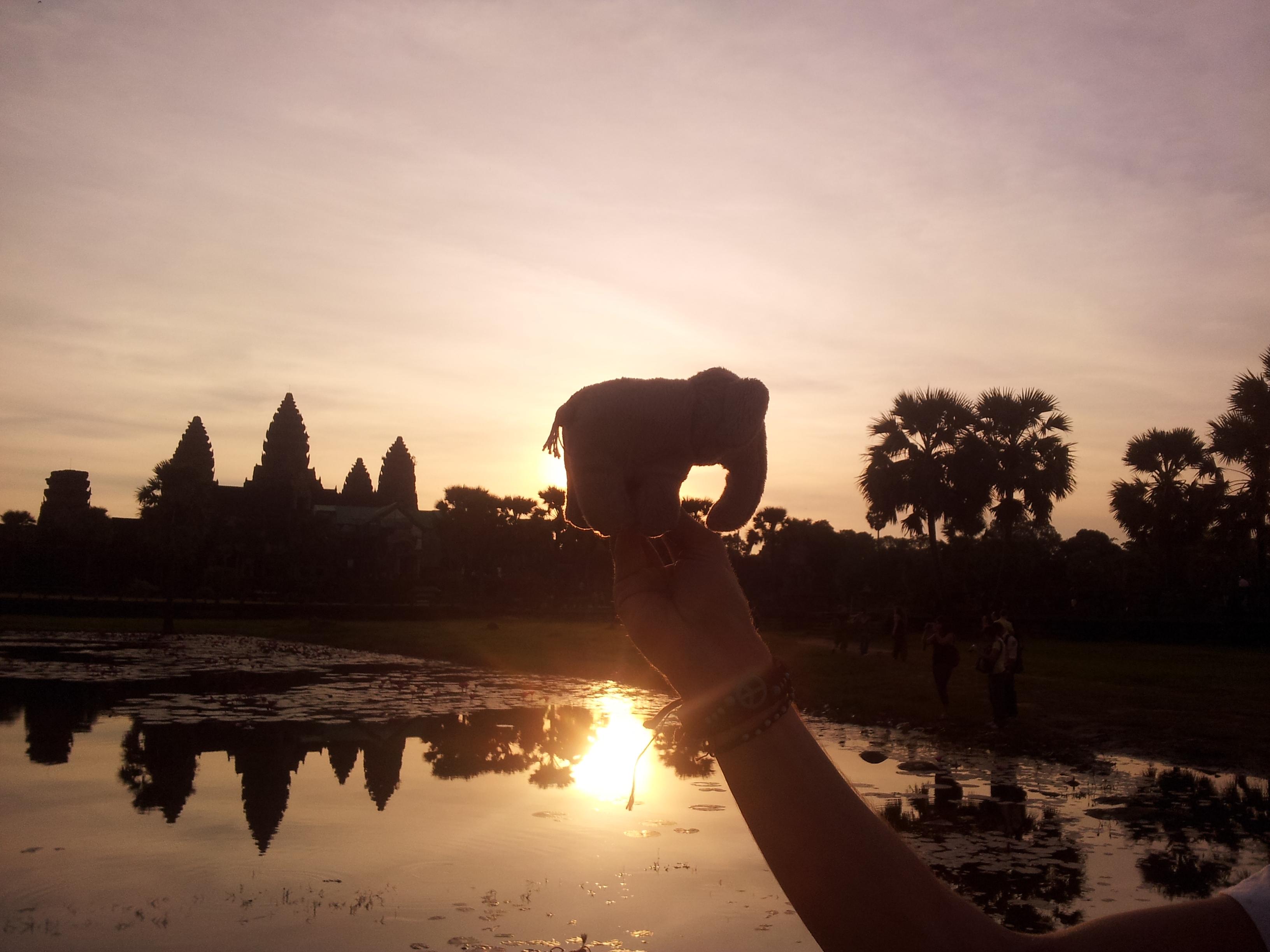 Fred (groß, mittig) und Angkor Wat (klein, links)