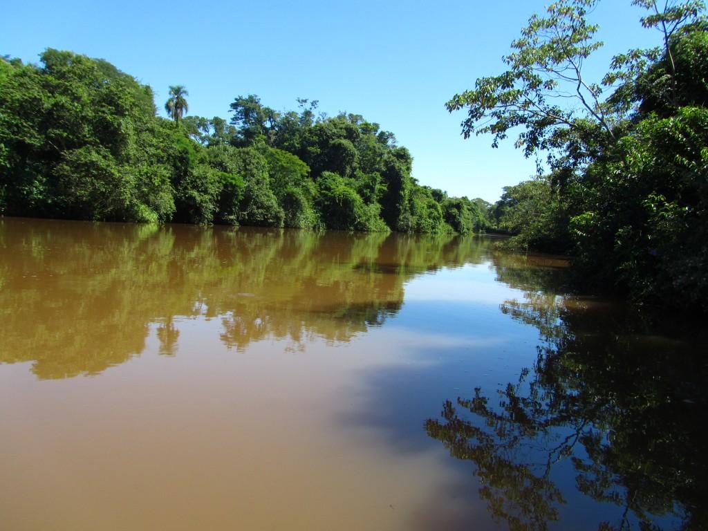 Toller Kontrast, den die grünen Bäume gegen das erdige Wasser bilden. Das ist aber auch schon der Höhepunkt der Bootsfahrt.
