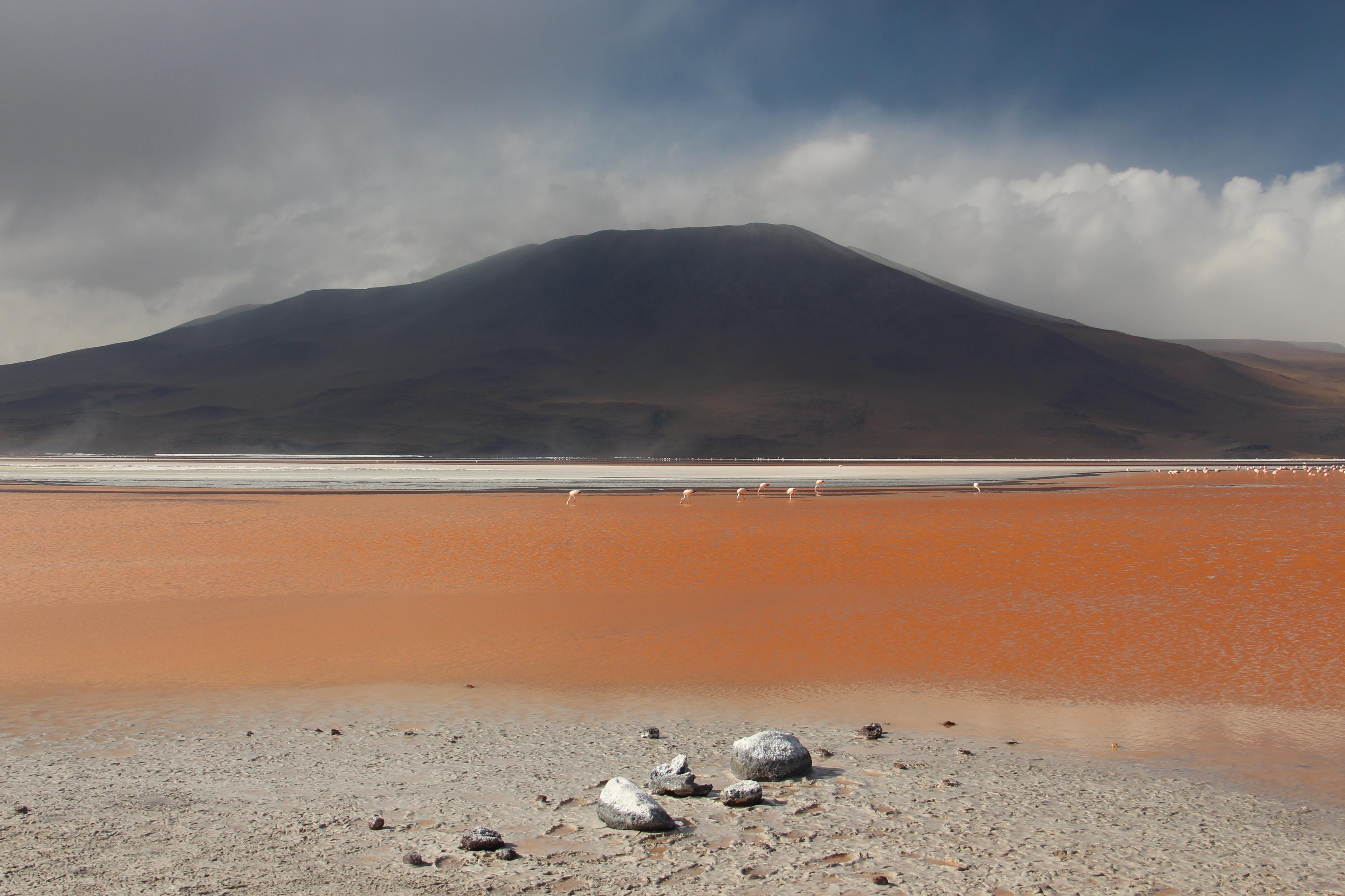 Keine Ahnung, ob das Ding Laguna Rosso hieß. Auf jeden Fall jede Menge Flamingo-Futter drin!