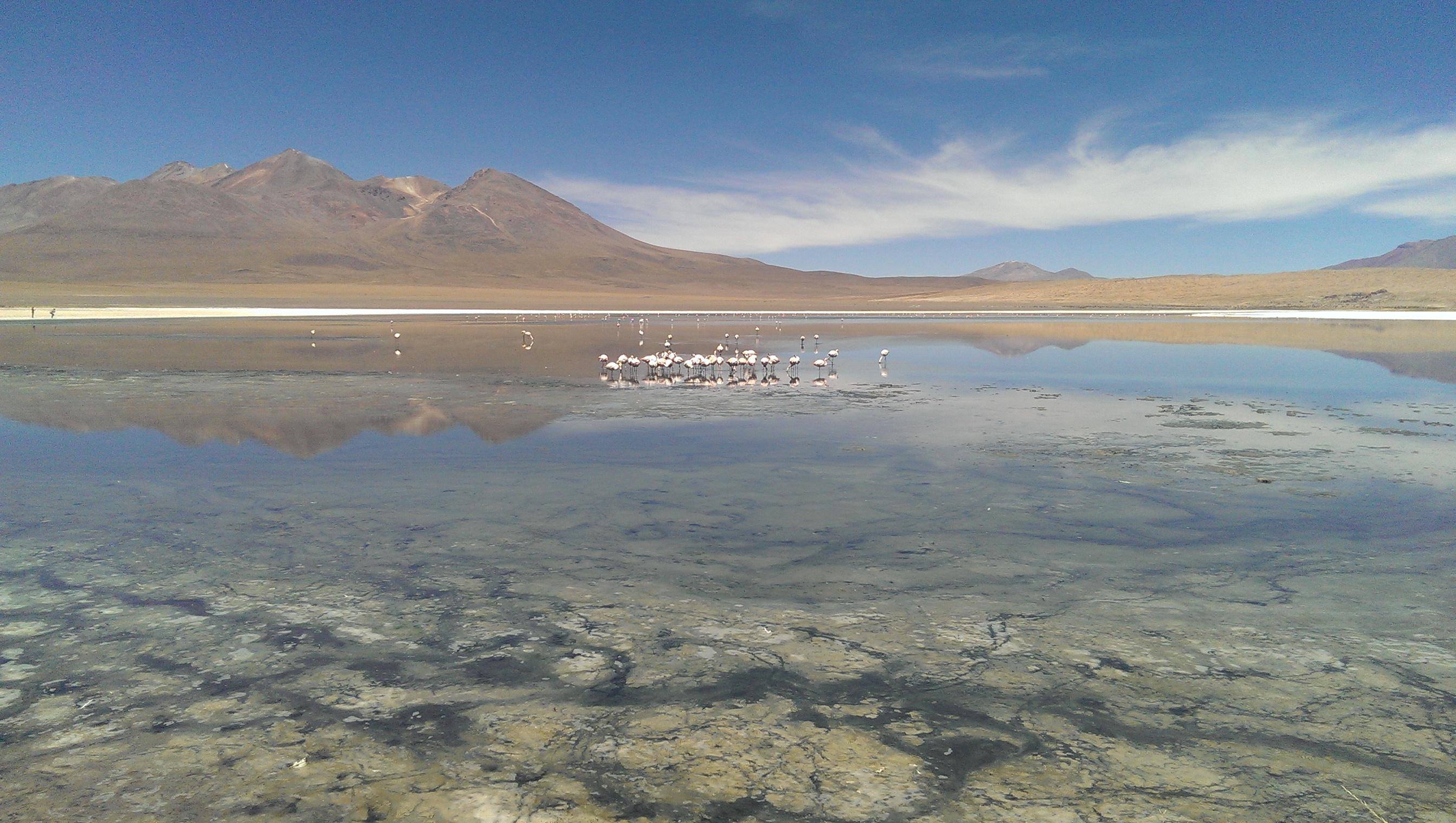An den Bildern ist nix bearbeitet - das sah wirklich so aus. Und das romantische, grau-grüne Zeug da am See ist Flamingo-Scheiße.