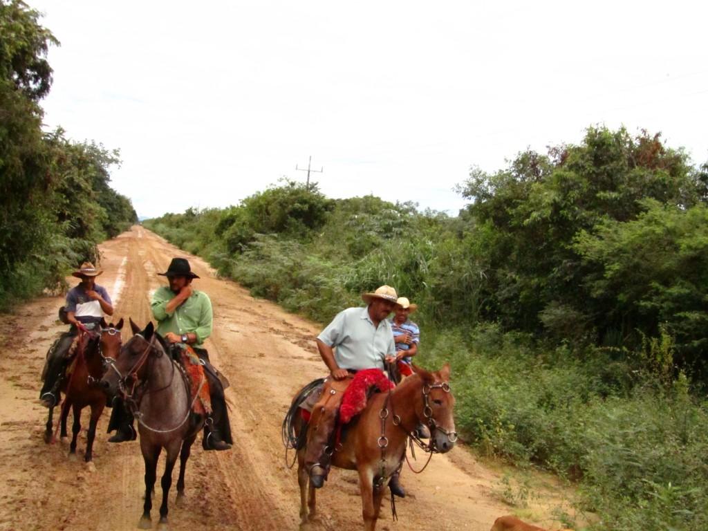 Ein paar Mal mussten wir auch für ein paar Reiter die Geschwindigkeit drosseln. Langsam + Pferde = unglaublich viele Moskitos!!!!